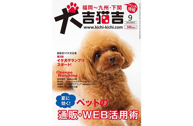 犬吉猫吉 表紙モデル トイプードル