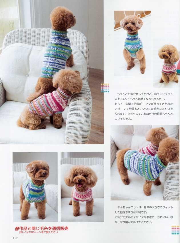 手編み大好き モデル犬 トイプードル