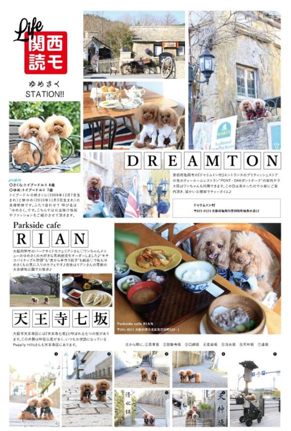 雑誌掲載モデル犬