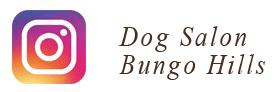 トリミング DogSalon BungoHills