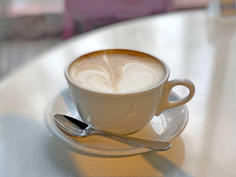 ナポレオンパイ 港区外苑のドッグカフェ
