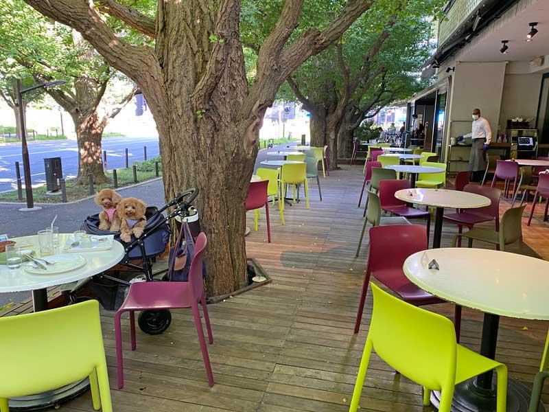 KIHACHI ドッグカフェ